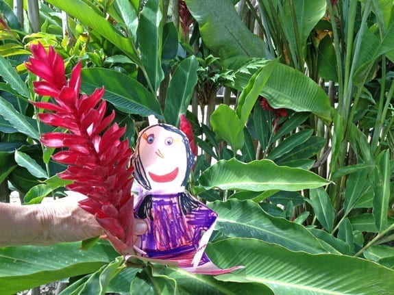 Flat Stanley Checking out the Hibiscus Flowers