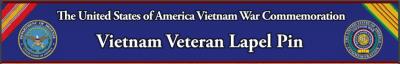Vietnam Veteran Lapin Pin